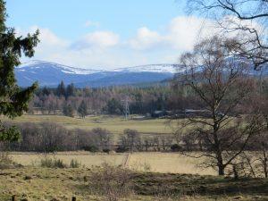 Locheil view